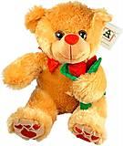 Мягкий медведь с розой коричневый, 026442-2, отзывы