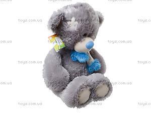 Мягкий медведь «Тедди» для детей, 10.14.04, купить