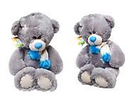 Мягкий медведь «Тедди» для детей, 10.14.04, купить игрушку