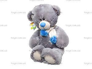 Мягкий медведь «Тедди» для детей, 10.14.04, цена