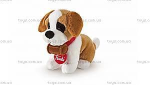 Мягкая игрушка «Щенок сентбернара», 52135