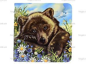Книжка про зверей «Медвежонок», А582008У, цена
