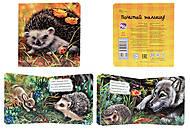 Книжка про зверей «Ёжик», А582002Р, фото
