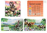 Книжка про зверей «Зайчик», А582001Р, купить