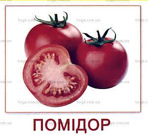 Мини-карточки «Овощи», 65798, купить