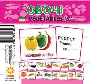 Мини-карточки «Овощи», 65798