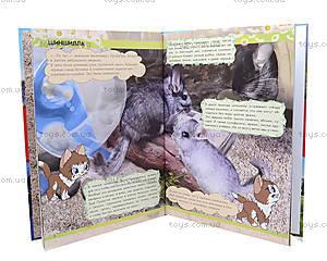 Мир животных «От хомячка до динозавра», С900926Р, фото