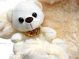 Мягкий медвежонок с игрушкой, 313145, фото