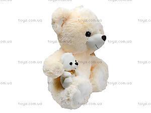 Мягкий медвежонок с игрушкой, 313145, игрушки
