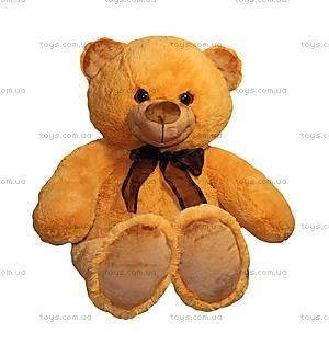 Плюшевый медвежонок «Сашка», МСА2