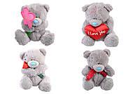 Мягкая игрушка «Teddy», MI0013t13, отзывы