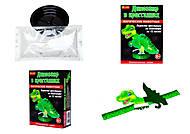 Набор для опытов «Магические животные. Динозавр в кристаллах», 0265