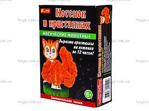 Набор для опытов «Магические животные. Котик в кристаллах», 0264, купить