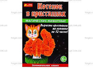 Набор для опытов «Магические животные. Котик в кристаллах», 0264, отзывы