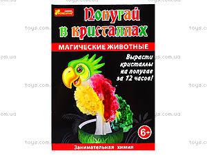 Набор для опытов «Магические животные. Попугай в кристаллах», 0270, цена
