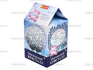Набор для опытов «Белый магический кристалл», 0272, купить