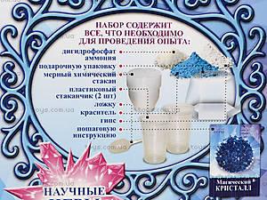 Творческий набор «Магический кристалл. Синий», 0271, фото