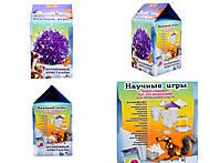 Фиолетовые волшебные кристаллы, 0276, фото