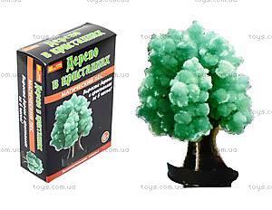 Набор для опытов «Лес кристаллов», зеленый, 0259
