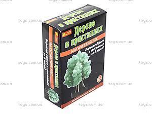 Набор для опытов «Лес кристаллов», зеленый, 0259, отзывы