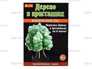 Набор для опытов «Лес кристаллов», зеленый, 0259, цена