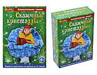 Набор для опытов «Веселый гном в кристаллах», 0255