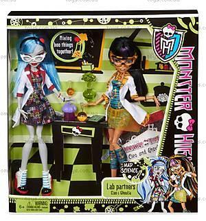 Набор кукол Monster High «Домашнее задание», BBC80