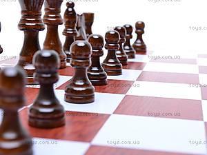 Набор 3 в 1 «Шашки, шахматы, нарды», 2118, фото
