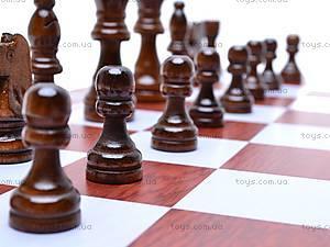 Набор 3 в 1 «Шашки, шахматы, нарды», 2118