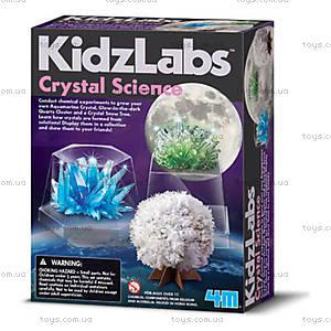Набор «Детская лаборатория. Наука о кристаллах», 00-03917