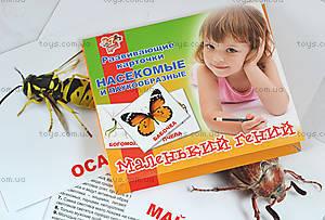 Набор детских карточек «Насекомые», 951291