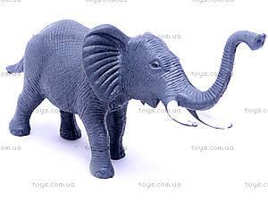 Набор диких животных для детей, HB9925, детские игрушки