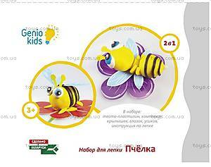 Набор для детского творчества «Пчёлка», TA1071