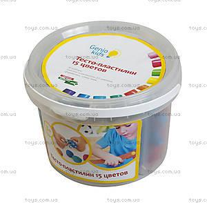 Набор для детской лепки «Тесто-пластилин 15 цветов», TA1066