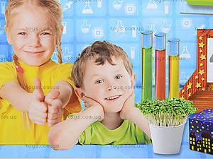 Набор для экспериментов «Лаборатория школьника: 1-2 класс», 9781, фото