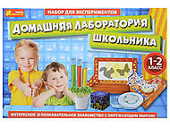 Набор для экспериментов «Лаборатория школьника: 1-2 класс», 9781, купить