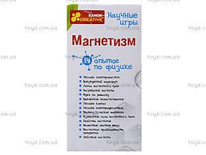 Набор для экспериментов «Магнетизм», 0324, купить