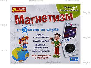 Набор для экспериментов «Магнетизм», 0324, цена