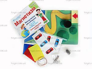 Набор для экспериментов «Магнетизм», 0324, детские игрушки