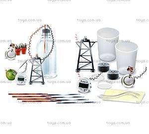 Набор для экспериментов «Природная батарейка», 00-03261, фото