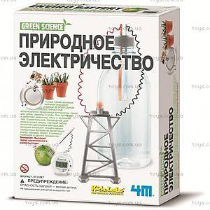 Набор для экспериментов «Природная батарейка», 00-03261, отзывы