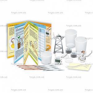 Набор для экспериментов «Природная батарейка», 00-03261, цена