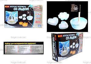 Набор для экспериментов «Интересные опыты со льдом», 0393