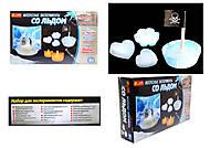 Набор для экспериментов «Интересные опыты со льдом», 0393, купить