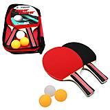 Набор для настольного тенниса (TT2023), TT2023, тойс