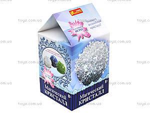 Набор для опытов «Магический кристалл. Белый», 12138013Р, фото