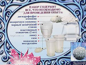 Набор для опытов «Магический кристалл. Белый», 12138013Р, отзывы