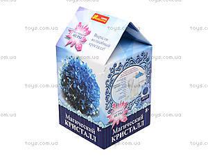 Набор для опытов «Магический кристалл. Синий», 12138012Р, купить