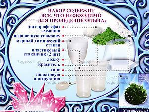 Набор для опытов «Магический кристалл. Зеленый», 12138014Р, отзывы