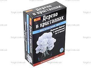 Набор для опытов «Сад пушистых кристаллов. Магический лес», белый, 0261, цена